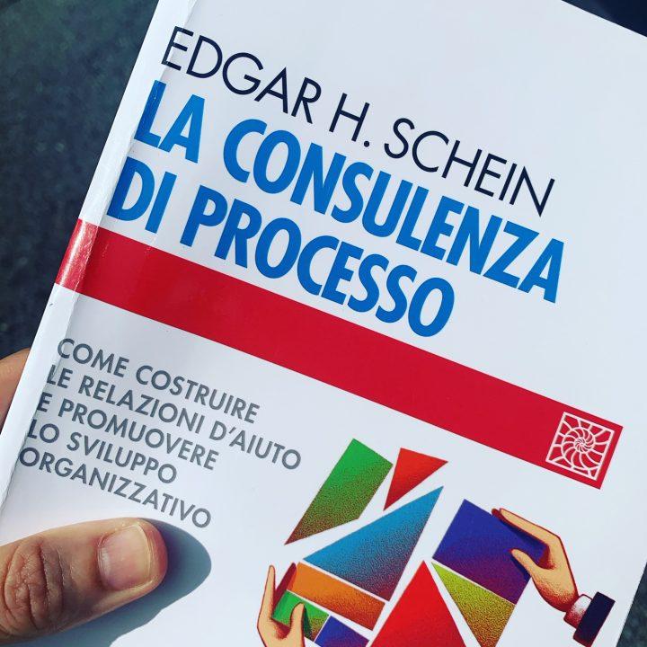 consulenza di processo